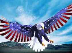 American Eagle Rising