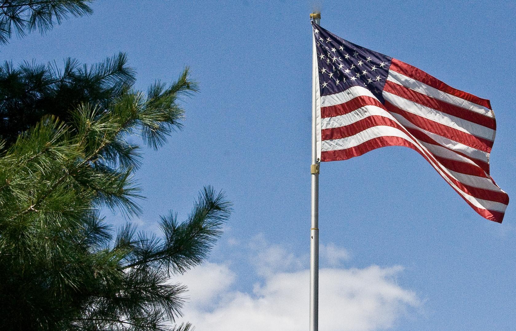 US Flag & pine
