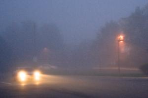 Car Driving in Fog