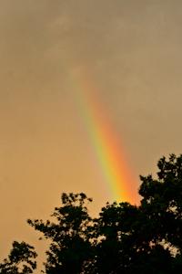 Rainbow, June 28, 2013